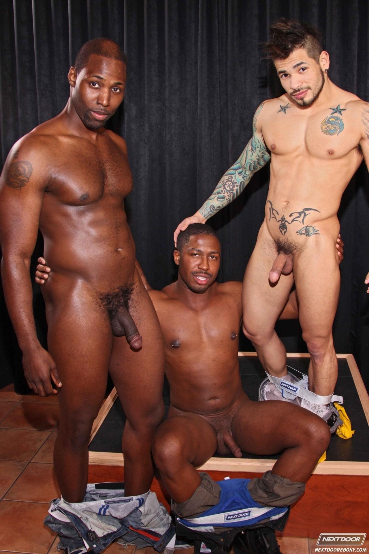 Gay Porn White Guys