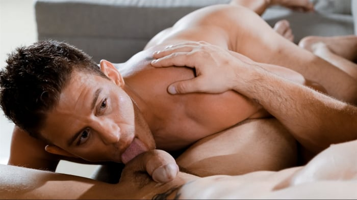 Roman Todd in 'Evening Bootycall'